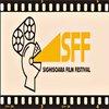 Stiri despre Filme - UPDATE Sighisoara Film Festival, 22-27 iunie 2010